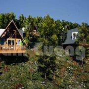 Hút khách với mẫu thiết kế bungalow resort đẹp lạ